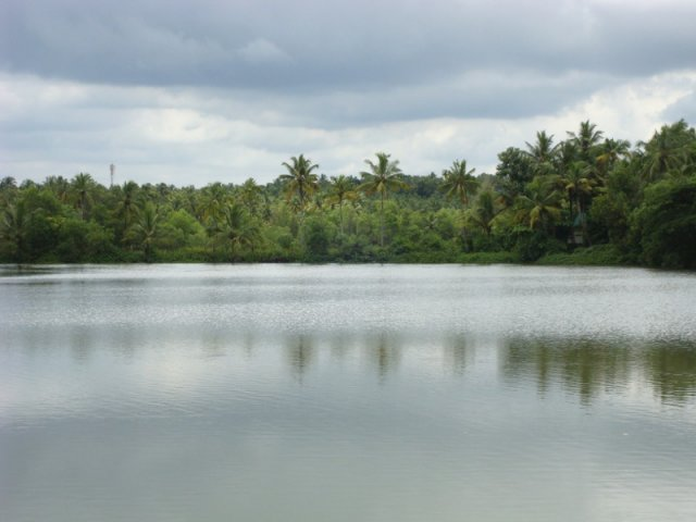 Agency for Development of Aquaculture, Kerala - ADAK Fish Farm Poyya, Mala, Kerala, established in 1989 with the help of UNDP.