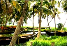 Famous Backwaters In Kerala